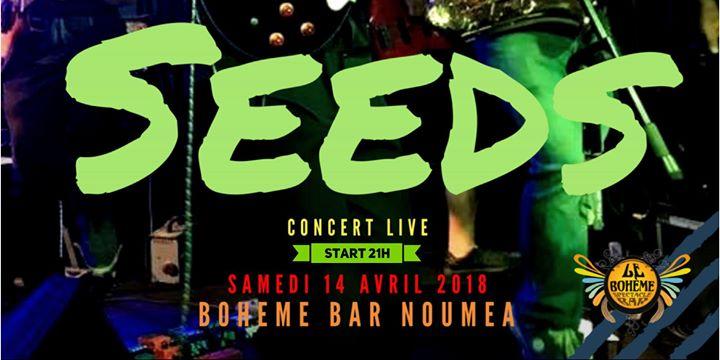 Seeds-Concert Live-Boheme